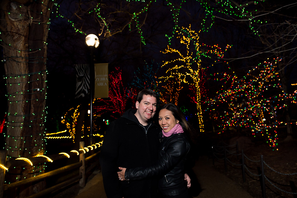 Lincoln Park Zoo Lights Session