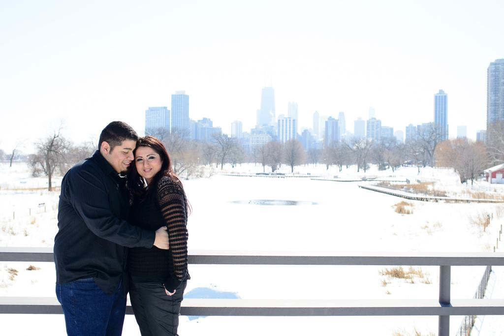 Blog_Chicago-engagment-photography-anniversary-session-lincoln-park-conservatory-honey-comb-downtown-skyline (16 of 17)