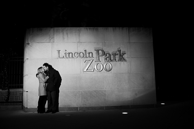 Blog_chicago-wedding-photographer-Lincoln-park-zoo-lights-chicago-engagement-session-8131