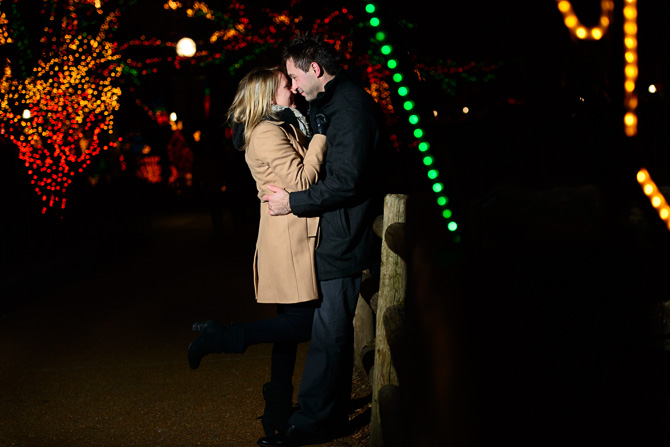Blog_chicago-wedding-photographer-Lincoln-park-zoo-lights-chicago-engagement-session-8696